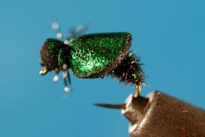 Disc O' Beetle