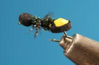 UCM Ant