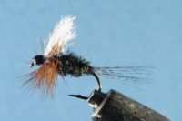 Blue gill fly