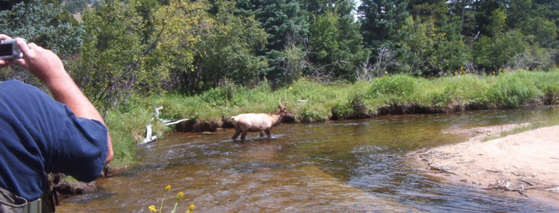 Fly fishing with Joe Egry